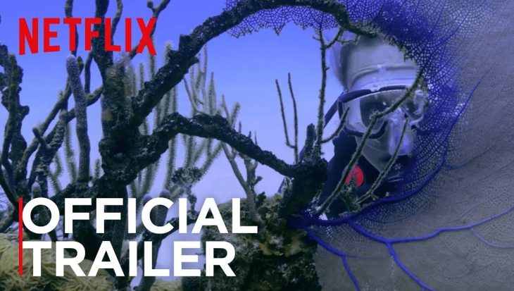 Nu op Netflix: Chasing Coral