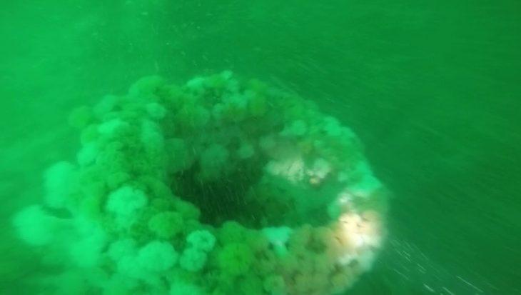 Duitse duikboot WO I gevonden in Noordzee