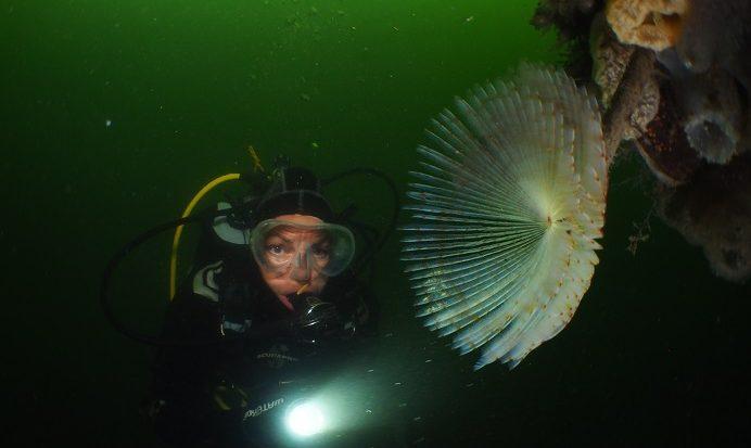 Raymond Wennekes opnieuw beste onderwaterfotograaf van Nederland