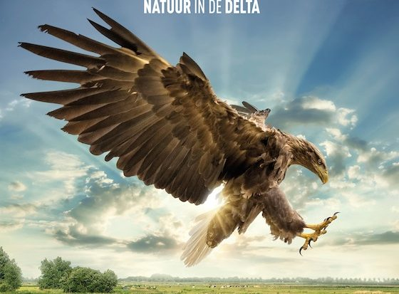 OFFT: The making off Holland – Natuur in de Delta