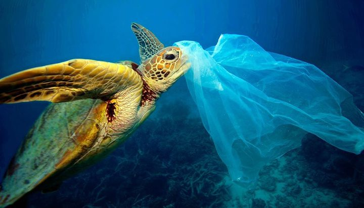Oproep voor verbod op plastic tasjes Curacao