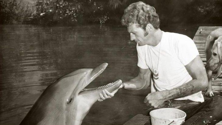 """""""Het is onaanvaardbaar om dolfijnen te gebruiken voor entertainment"""""""