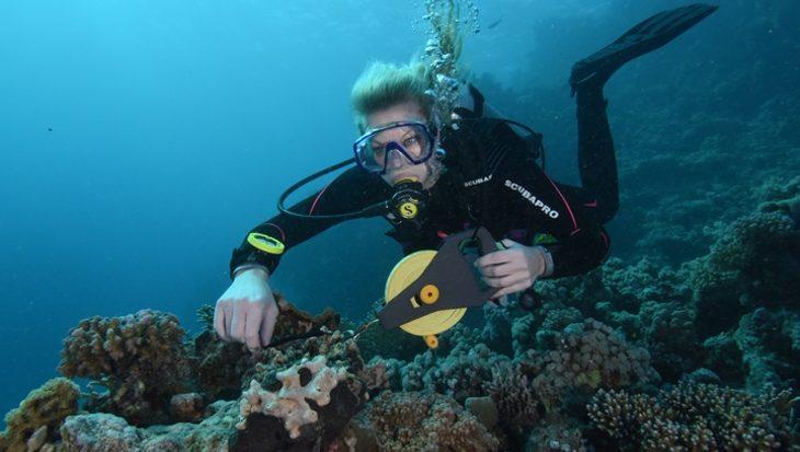 Marien bioloog voor een dag, Open Ocean Science Centre