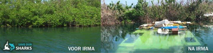 Crowdfunding voor Sint Maarten