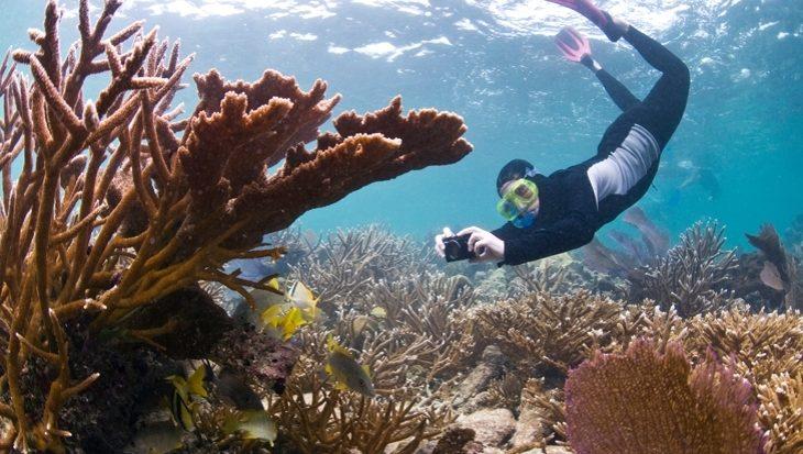Belize: permanent verbod op olieboringen rond enorm koraalrif