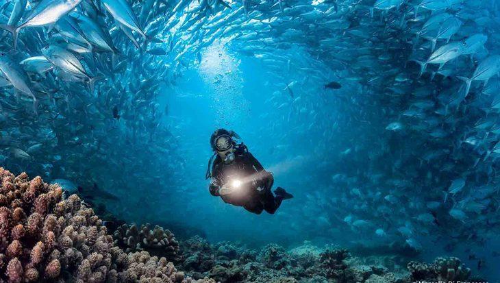 Duikvaker 2018 Guy Thomas: Onze missie is verbetering van duikveiligheid
