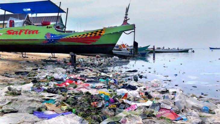 Koraal wordt ziek van het plastic dat wij overal dumpen