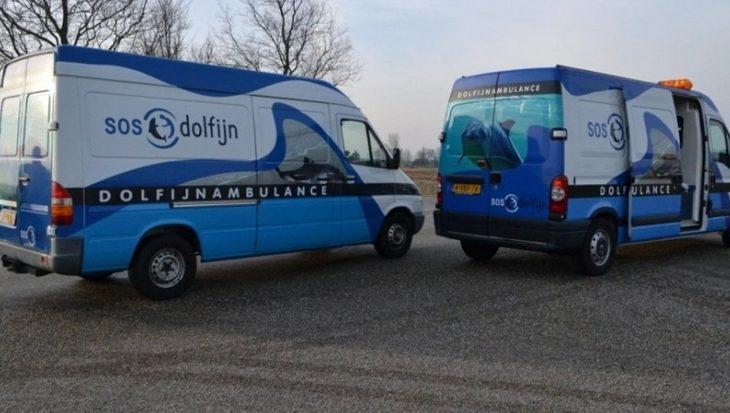 2017 druk jaar voor SOS Dolfijn