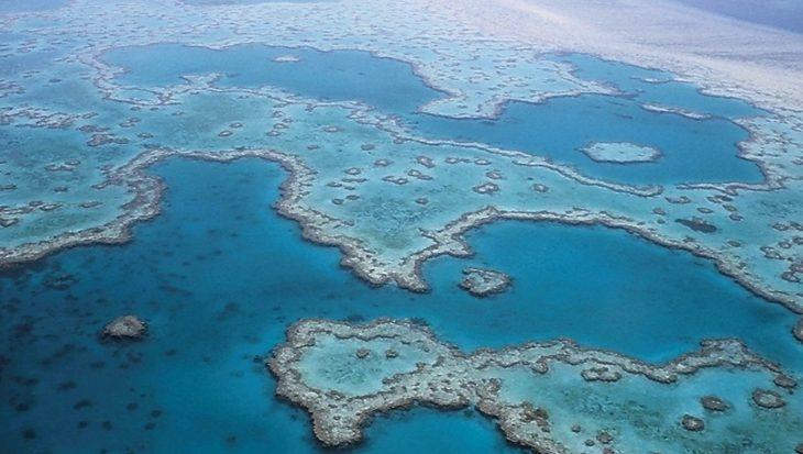 Weer een bedreiging voor koraalriffen aangekaart: erosie