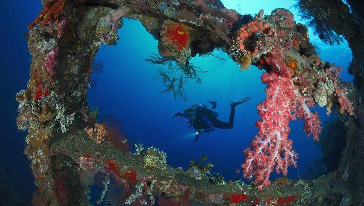 Bekendste duiksite van Indonesië Liberty wreck in Bali