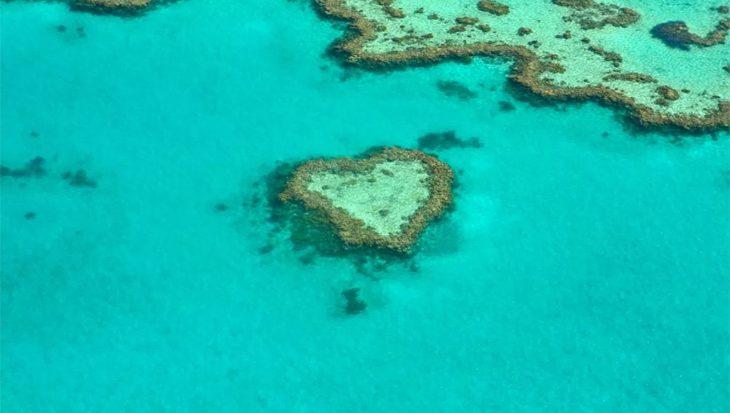 Het Great Barrier Reef wordt nooit meer de oude