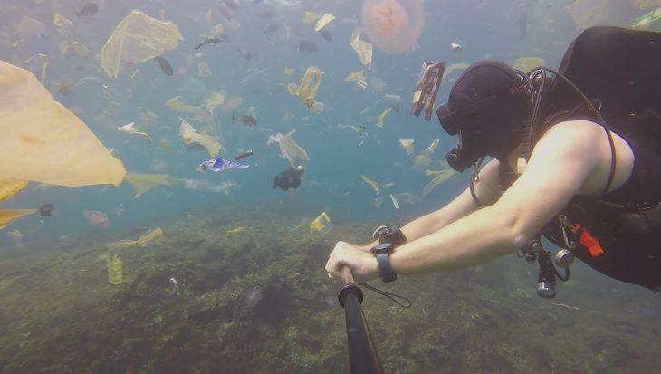 Duiker zoekt manta's maar zwemt tussen plastic soep