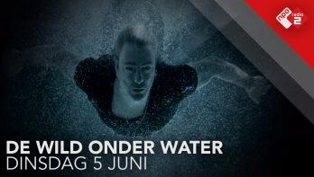 De Wild Onder Water