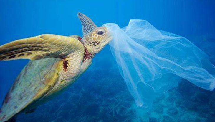 De Middellandse Zee dreigt 'zee van plastic' te worden