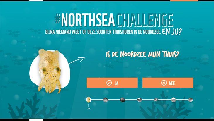 Ken jij deze schatten uit de Noordzee?