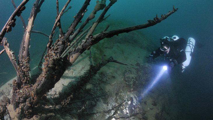 Drijfvermogen, trim en balans onder water