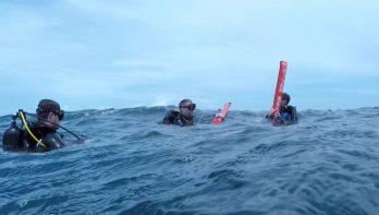 Gave compilatie van deelnemer lezersreis Malediven