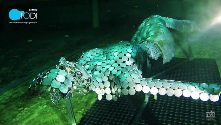 Kunst onder water bij TODI