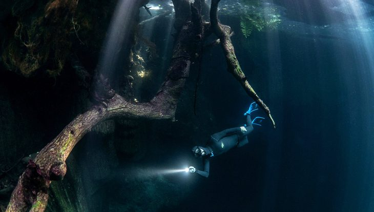 Freediving in de cenotes van Mexico