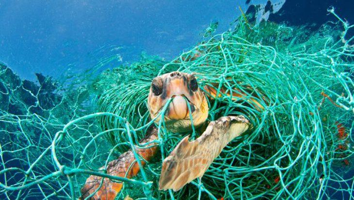 Gezamenlijke plannen tegen plasticvervuiling voor Caribische regio