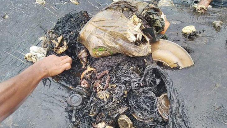 Hartverscheurend beeld; zes kilo plastic in maag dode potvis