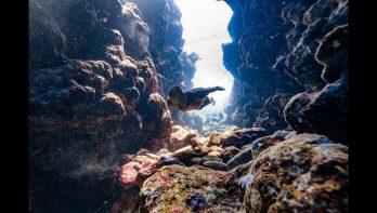 Freediver Stig Pryds springt in een 30 meter diepe kloof