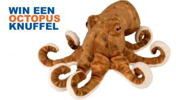 Win een octopus