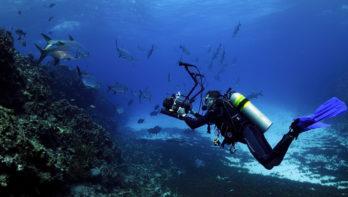 Jouw perfecte duikuitrusting voor Bonaire