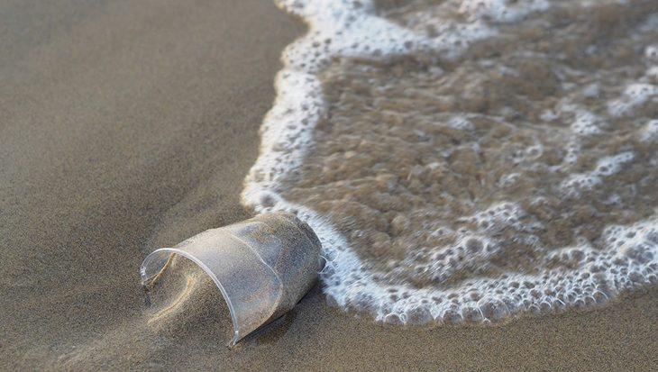 Ook dieren op extreme diepte blijken plastic te bevatten