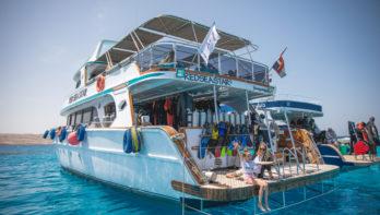 Is Egypte veilig voor reizigers en duikers?