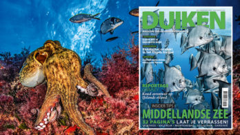 DUIKEN JUNI 2019: Middellandse Zee special
