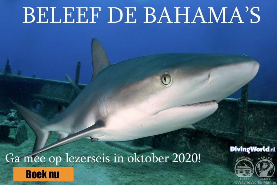 Duiken lezersreis Bahama's 2020