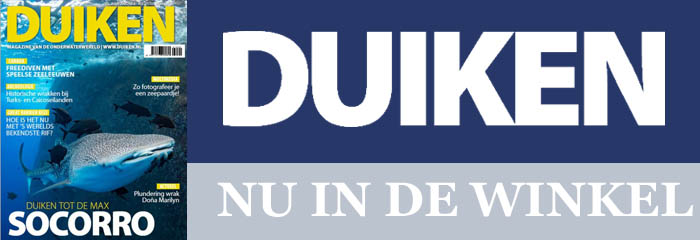 7a29dda737f40c DUIKEN - Dé website voor onderwatersporters uit Nederland en België