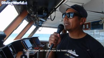 Liveaboard Socorro episode 2: Nautilus Liveaboard Tour