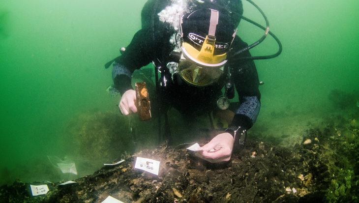 's Werelds oudste scheepswerf ontdekt op 11 meter diepte