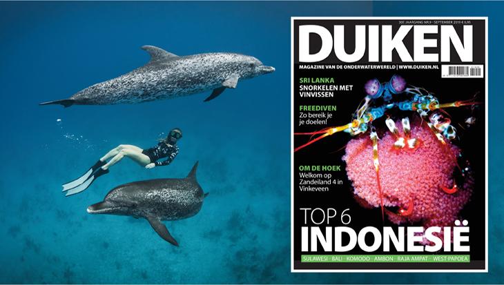 DUIKEN SEPTEMBER 2019: Top 6 Indonesië