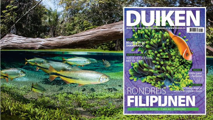 DUIKEN OKTOBER 2019: Rondreis Filipijnen