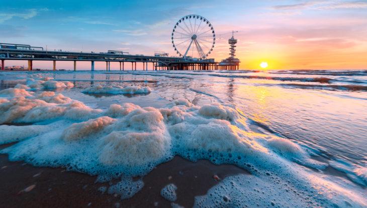 Zwem mee voor een schonere zee met WWF-Sea Swim