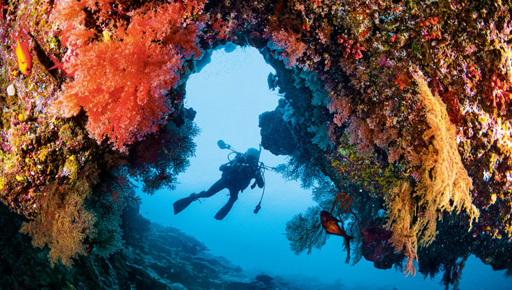 Christmas Island, verrassend anders