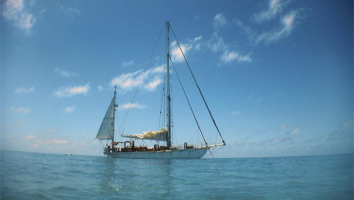 Duiken en zeilen van Tonga naar Nieuw-Caledonië