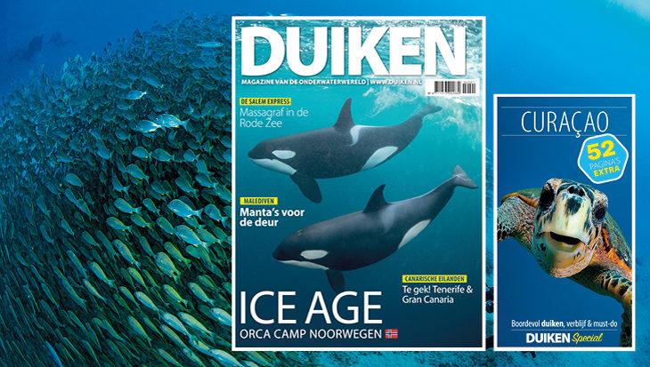 DUIKEN JANUARI 2020: Orca Camp Noorwegen