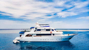 Blue Ocean Dive Centers & Resorts in Egypte