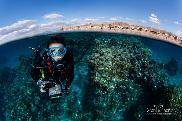 Diverse Divers