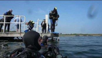 Zeepaardje in het Grevelingenmeer