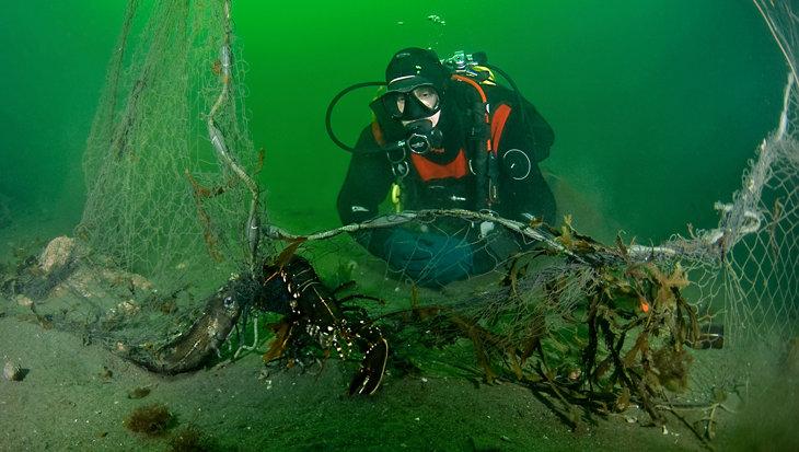 Verloren vistuig dodelijkste vorm van plastic afval voor zeedieren