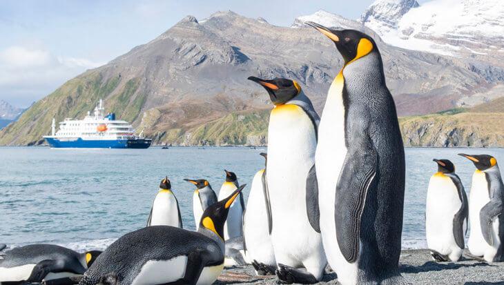 Antarctica: Het leven in de diepvries