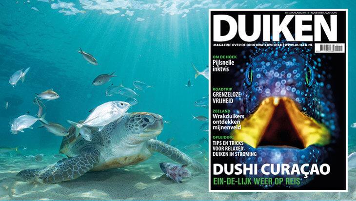 DUIKEN NOVEMBER UITGAVE: DUSHI CURACAO
