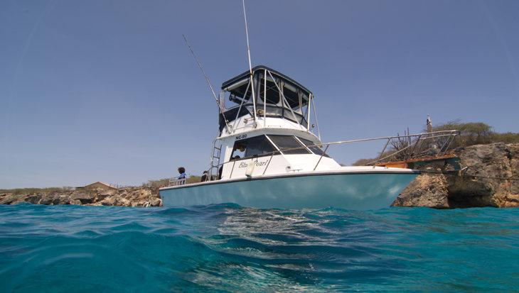 Goby Divers: «We organiseren technische duiken naar wrakken op 50 meter en dieper»