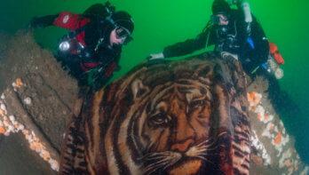 Uniek beeld van de Noordzee: In de Diepte