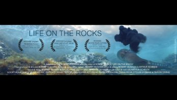 Documentaire Life on the rocks